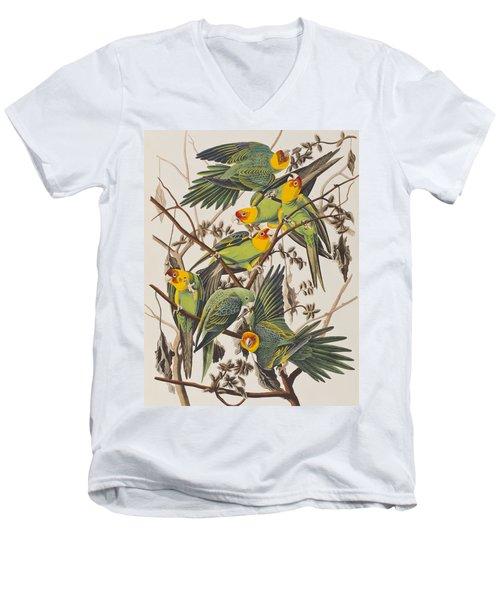 Carolina Parrot Men's V-Neck T-Shirt by John James Audubon