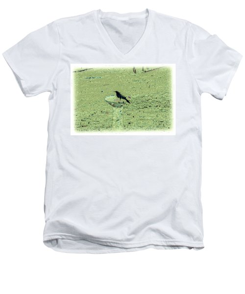 Crow And Bath Men's V-Neck T-Shirt by YoMamaBird Rhonda