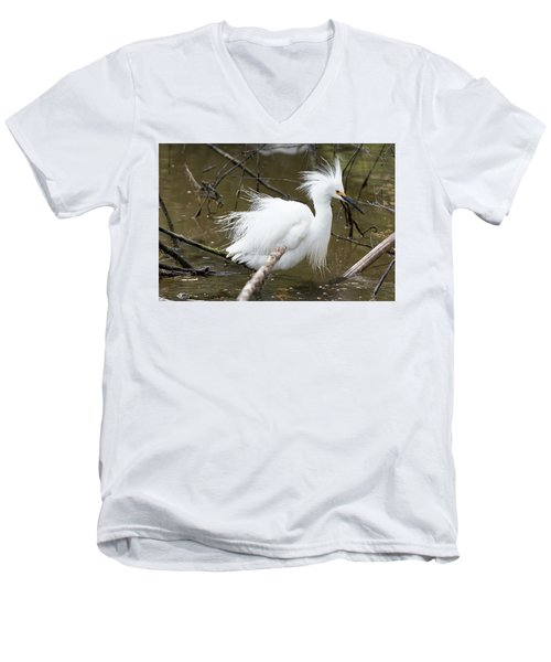 Egret Bath Men's V-Neck T-Shirt