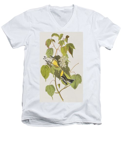 Hemlock Warbler Men's V-Neck T-Shirt