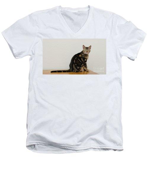 1 Men's V-Neck T-Shirt