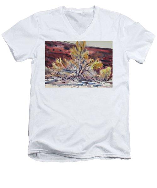 Ironwood Men's V-Neck T-Shirt by Donald Maier