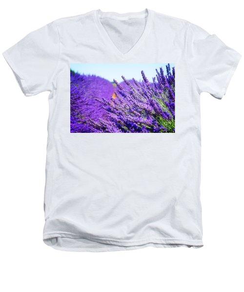 Lavender Field Men's V-Neck T-Shirt by Anastasy Yarmolovich