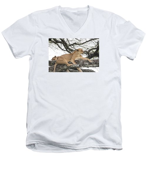 Men's V-Neck T-Shirt featuring the photograph Lions In A Tree by Pravine Chester