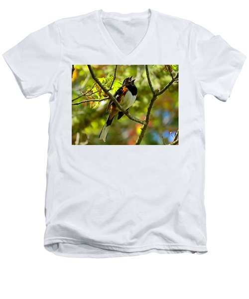 Towhee In Song Men's V-Neck T-Shirt