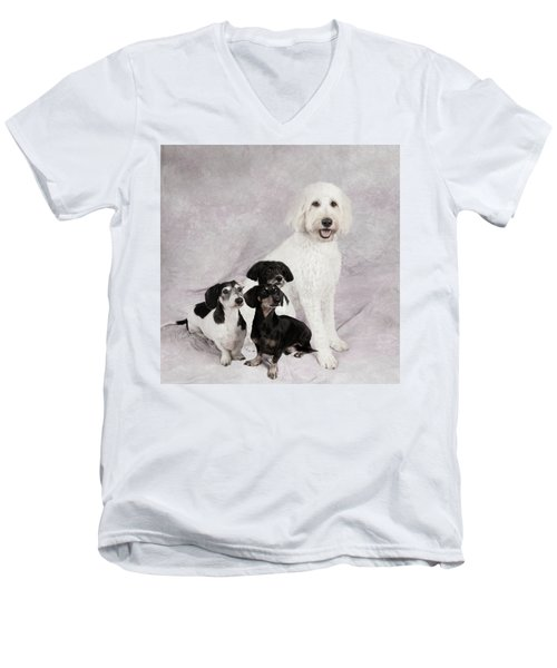 Fur Friends Men's V-Neck T-Shirt by Erika Weber