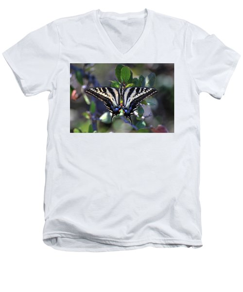 Pale Swallowtail Men's V-Neck T-Shirt