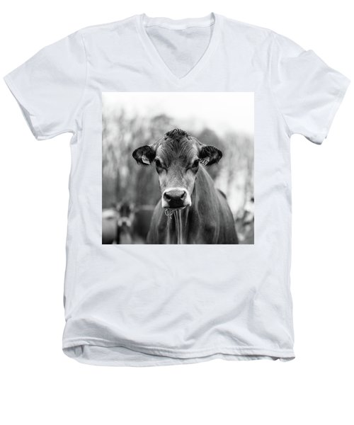 Portrait Of A Dairy Cow In The Rain Stowe Vermont Men's V-Neck T-Shirt