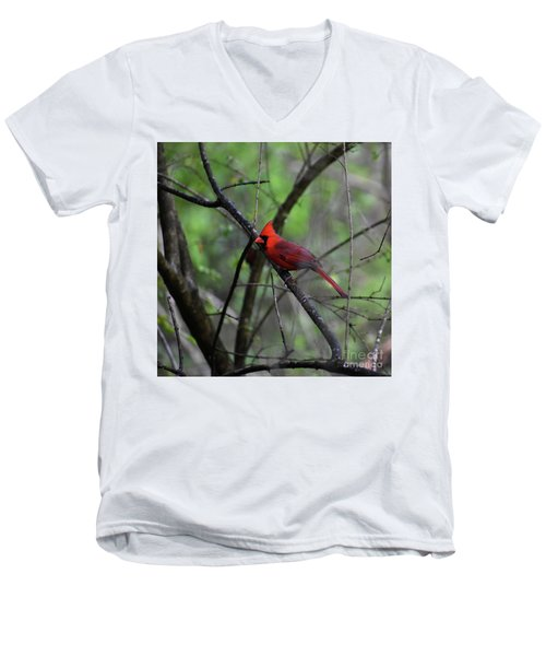 Men's V-Neck T-Shirt featuring the photograph Saint Louis by Skip Willits
