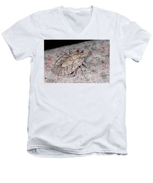 Men's V-Neck T-Shirt featuring the photograph Stink Bug by Breck Bartholomew