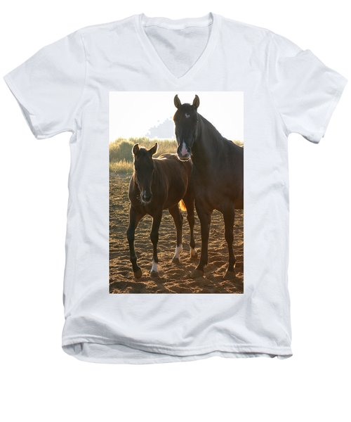 Texas Mare  Men's V-Neck T-Shirt