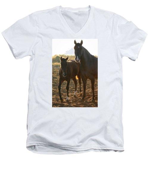 Texas Mare  Men's V-Neck T-Shirt
