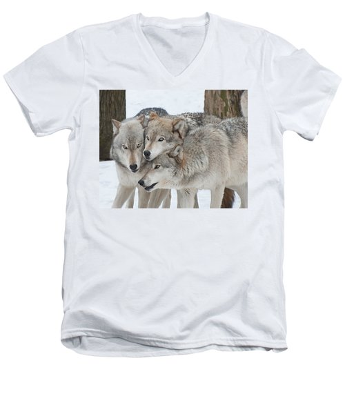 Three Wolves Are A Crowd Men's V-Neck T-Shirt