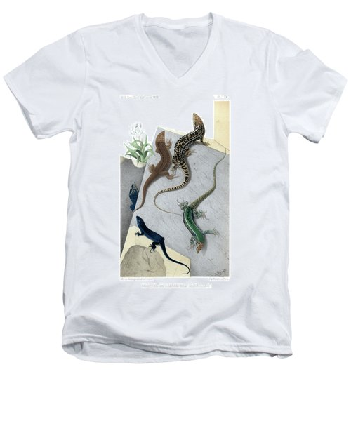 Men's V-Neck T-Shirt featuring the drawing Varieties Of Wall Lizard by Jacques von Bedriaga