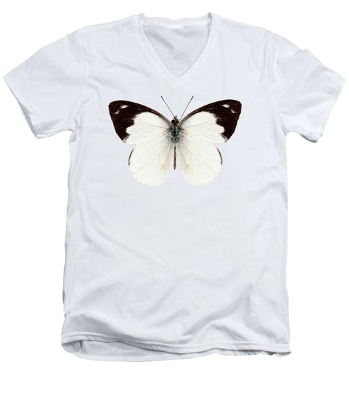 White Butterfly Species Apias Indra Indra Men's V-Neck T-Shirt