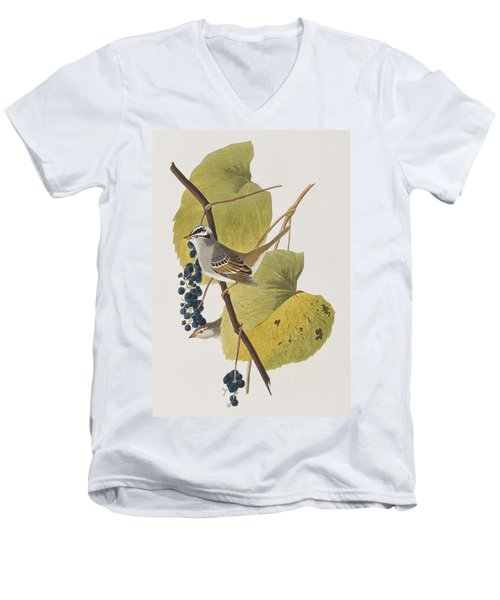 White-crowned Sparrow Men's V-Neck T-Shirt by John James Audubon