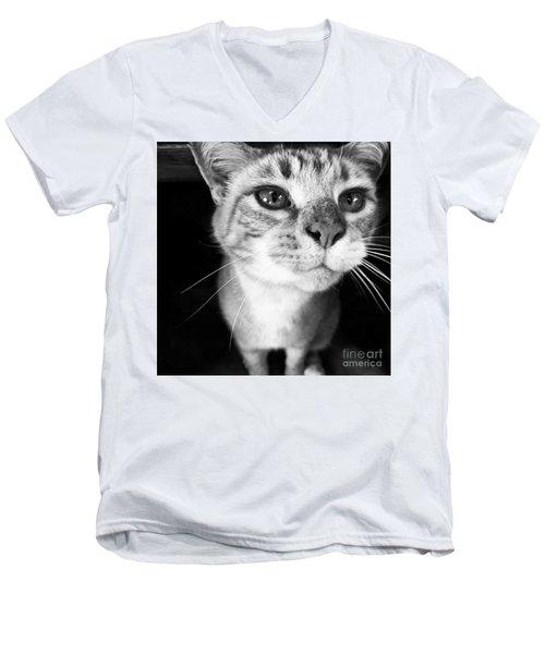 Who Me? Men's V-Neck T-Shirt