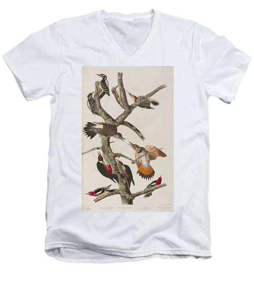 Woodpeckers Men's V-Neck T-Shirt