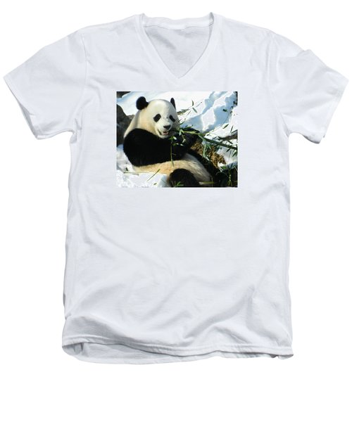 Bao Bao Sittin' In The Snow Taking A Bite Out Of Bamboo1 Men's V-Neck T-Shirt by Emmy Marie Vickers