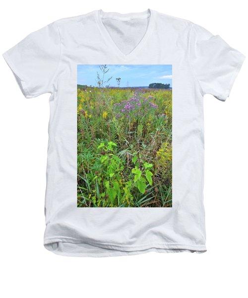 Glacial Park Native Prairie Men's V-Neck T-Shirt