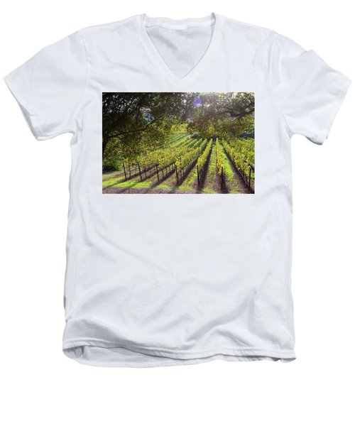 Grapevines In The Fall Men's V-Neck T-Shirt