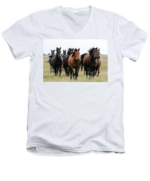 Horse Herd On The Hungarian Puszta Men's V-Neck T-Shirt