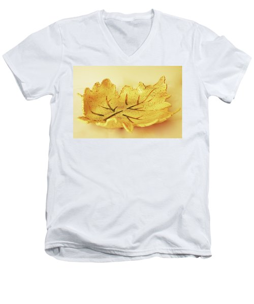 Leaf Plate2 Men's V-Neck T-Shirt
