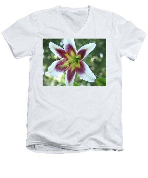 Oriental Lily Men's V-Neck T-Shirt by Rebecca Overton