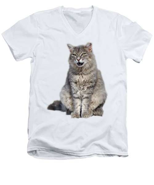 Men's V-Neck T-Shirt featuring the photograph Sitting Cat by George Atsametakis