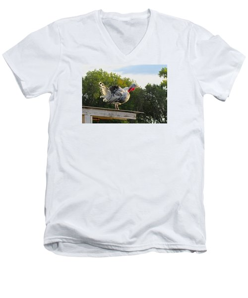 Men's V-Neck T-Shirt featuring the photograph Gobble Gobble by Brenda Pressnall