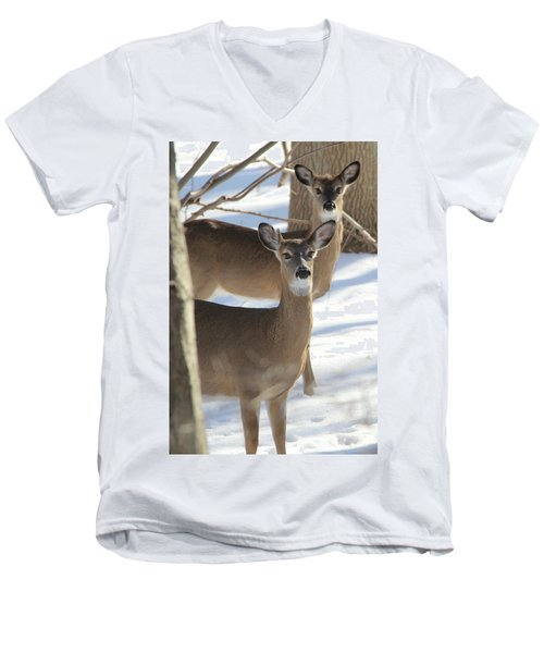 White Tailed Deer Smithtown New York Men's V-Neck T-Shirt