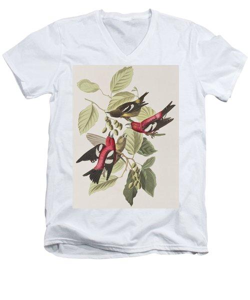White-winged Crossbill Men's V-Neck T-Shirt by John James Audubon