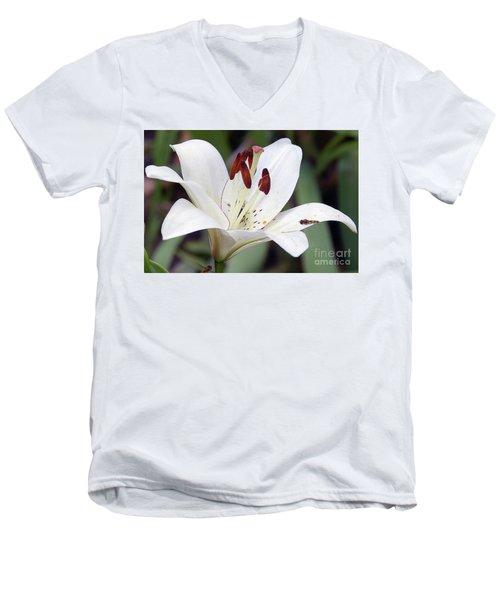 White Lily Men's V-Neck T-Shirt by Elvira Ladocki