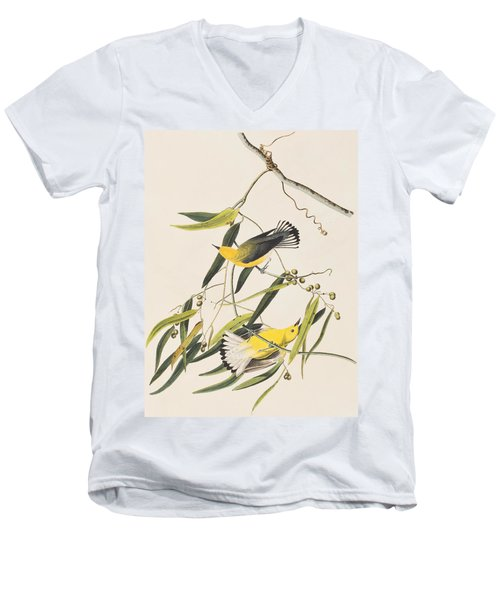 Prothonotary Warbler Men's V-Neck T-Shirt