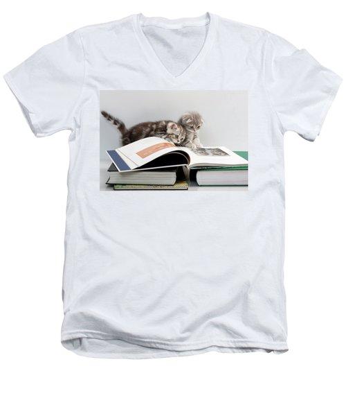 Scottish Fold Cats Men's V-Neck T-Shirt by Evgeniy Lankin