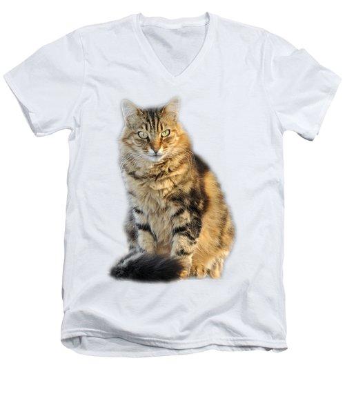 Sitting Cat Men's V-Neck T-Shirt by George Atsametakis