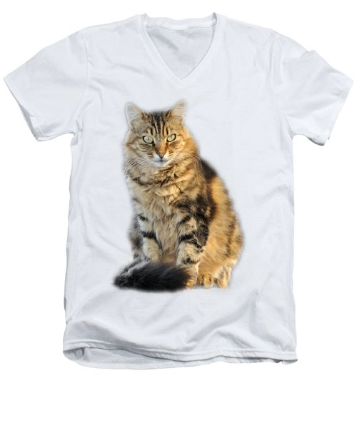 Sitting Cat Men's V-Neck T-Shirt