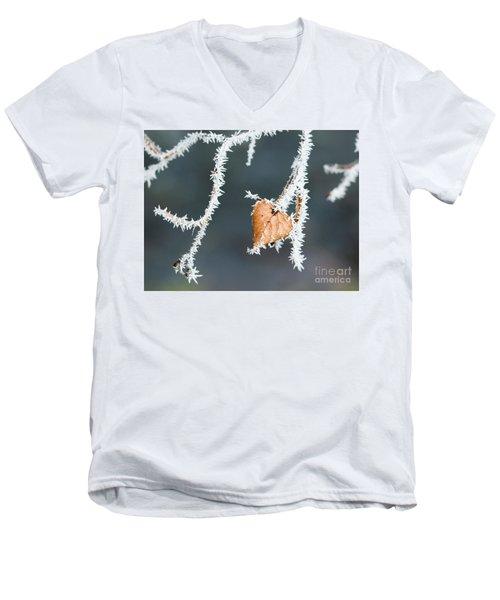 Winter Impressions Men's V-Neck T-Shirt
