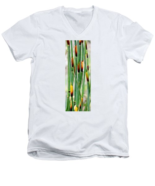 Men's V-Neck T-Shirt featuring the photograph Bamboo Grass by Werner Lehmann