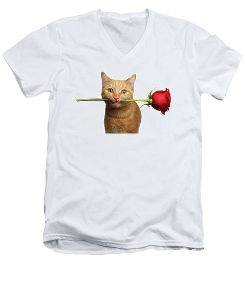 Portrait Of Ginger Cat Brought Rose As A Gift Men's V-Neck T-Shirt by Sergey Taran