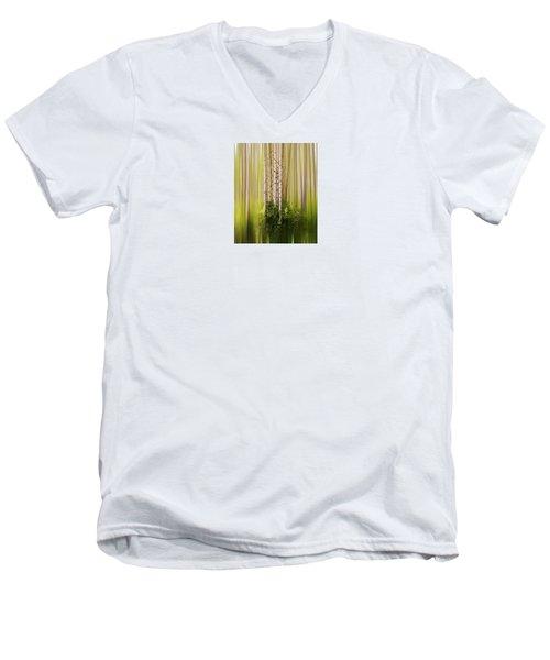 4012 Men's V-Neck T-Shirt by Peter Holme III