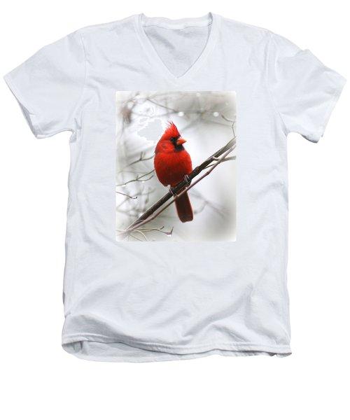 4772-001 - Northern Cardinal Men's V-Neck T-Shirt by Travis Truelove