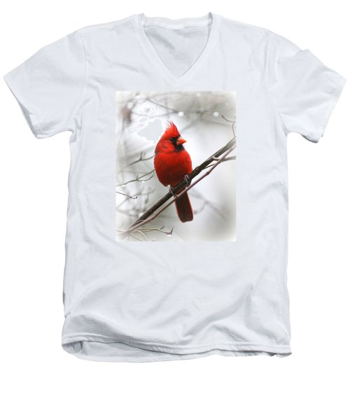 4772-001 - Northern Cardinal Men's V-Neck T-Shirt