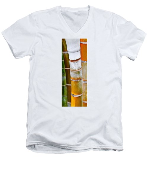 Men's V-Neck T-Shirt featuring the photograph Bamboo Palm by Werner Lehmann