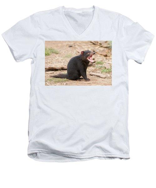 Tasmanian Devil Men's V-Neck T-Shirt by Craig Dingle