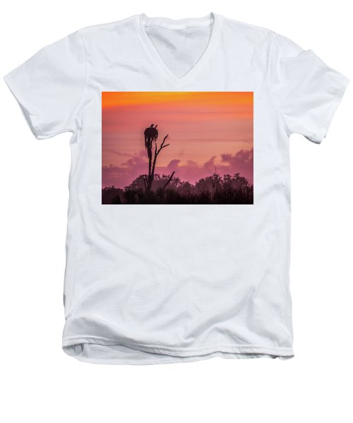 A Birdie Morning Men's V-Neck T-Shirt