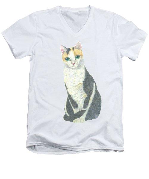 A Calico Cat Men's V-Neck T-Shirt
