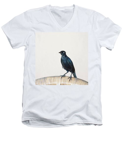 A Carib Grackle (quiscalus Lugubris) On Men's V-Neck T-Shirt
