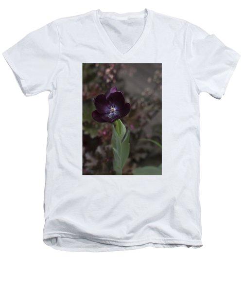 A Dark Richness Men's V-Neck T-Shirt by Morris  McClung