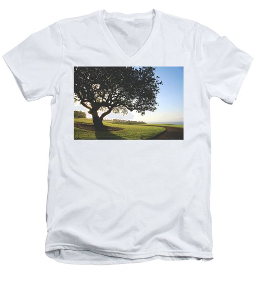 Men's V-Neck T-Shirt featuring the photograph A Dreamy Dream by Laurie Search